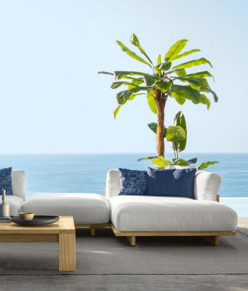Arco outdoor lounge set in Accoya wood and white fabric covering